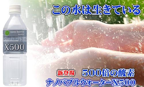 x500-header